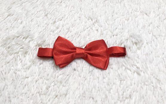 Gravata Borboleta Vermelha Cetim